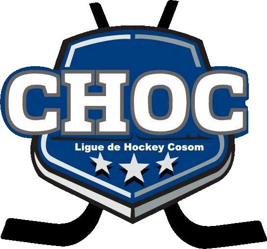 ligue hockey cosom
